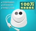 现货 海康威视100万高清IPC网络监控摄像机DS-2CD1301D-I 摄像头
